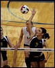 Lewis and Clark Volleyball :