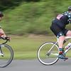 lifecycle crit nundah 2