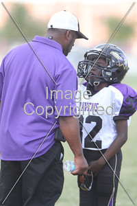 Ravens & Cowboys