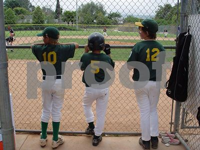 Little League and AllStars