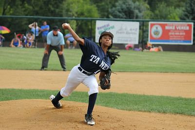 LITTLE LEAGUE: Taney wins state championship