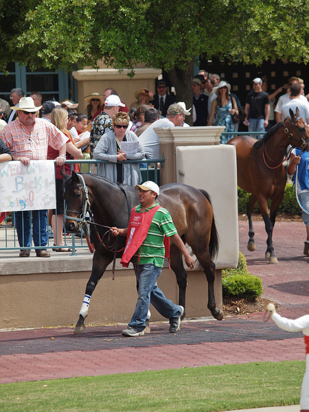 Lone Star Park- 2010 Images