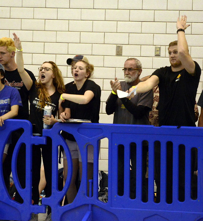 . Thompson Valley\'s coaches and managers cheer during Saturday\'s finals of the 4A State Swimming Championships at the Air Force Natatorium.
