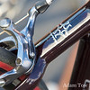 Leopard and Ultegra