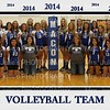 Macon Co Volleyball Team 2014 5x7