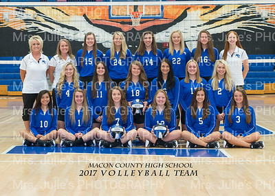 MCHS Volleyball 2017