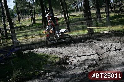 ABT25011