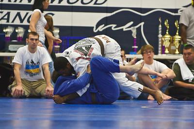 MMA_Houston_20090418_0024