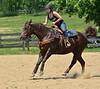 MONTOUR VALLEY HORSEMEN