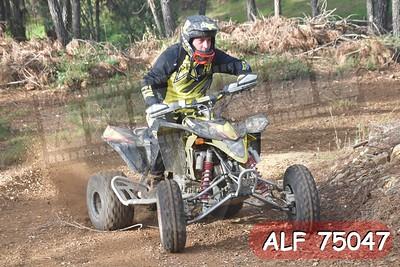 ALF 75047