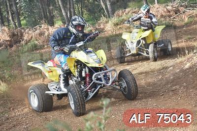 ALF 75043