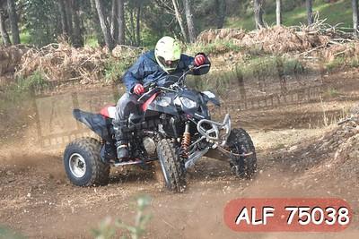 ALF 75038