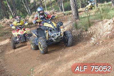 ALF 75052