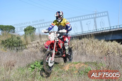 ALF75005