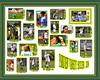 8x10 - Parkview Varsity 2008