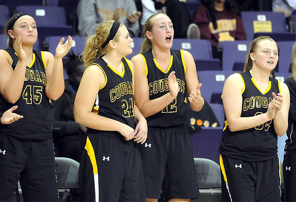 Pat Christman<br /> The Mankato East bench cheers during the closing moments of their win over Mankato West Tuesday at Bresnan Arena.