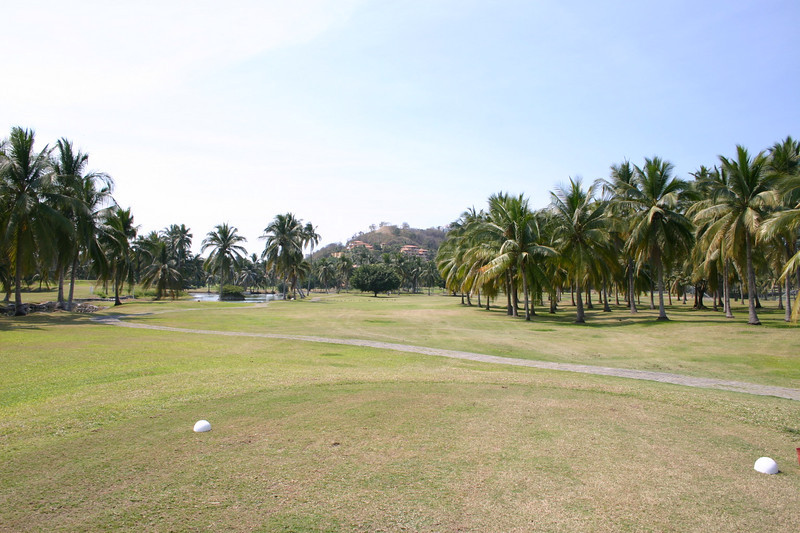 Hole seven is a dog leg right of 352 yards.  No point in trying to shorten the route by going over the palm trees on the right.