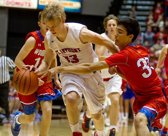 St. Anthony's Alex Deters, center, shields Woodlawn's Blake Fewkes from the ball during the fourth quarter of the Class 1A SIU Super-Sectional in Carbondale.