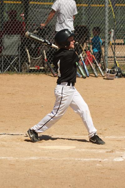 Marshall Tiger Black baseball 2014