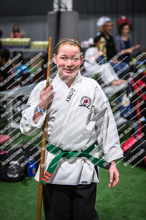 Martial Arts Experience Tournament