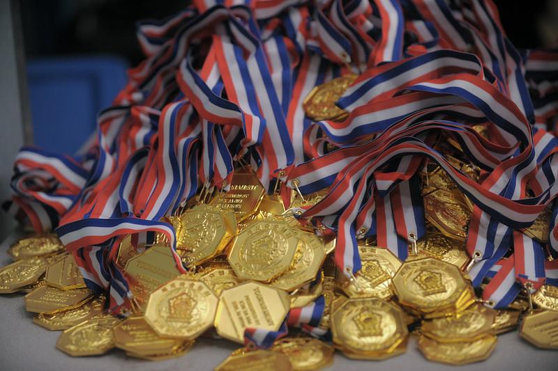 Gold at the 2016 WKSA Pacific Tournament, Folsom, CA.  April 16, 2016.