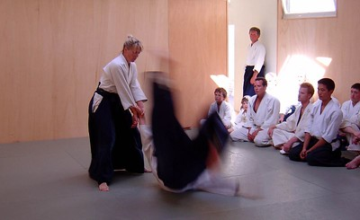 Sensei Suzuki during a demonstration