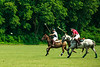 Maryland_Polo_20130630_021