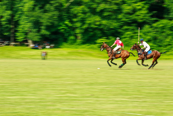 Maryland_Polo_20130630_042