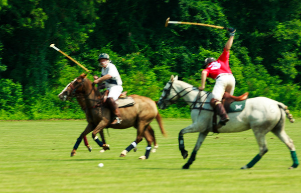 Maryland_Polo_20130630_018