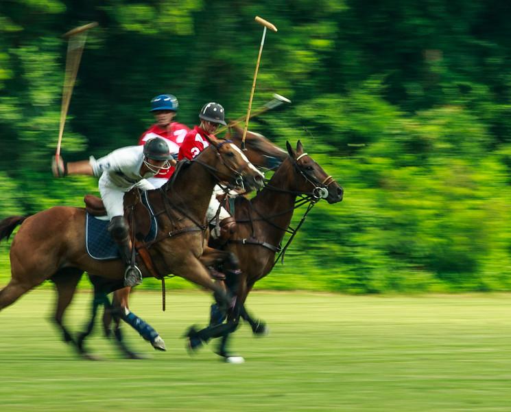 Maryland_Polo_20130630_026