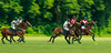 Maryland_Polo_20130630_024