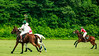 Maryland_Polo_20130630_036