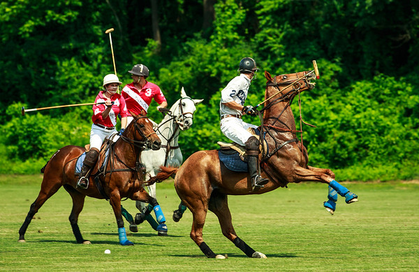 Maryland_Polo_20130630_017