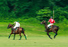 Maryland_Polo_20130630_023