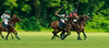 Maryland_Polo_20130630_025