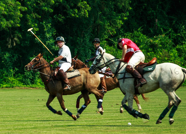 Maryland_Polo_20130630_020