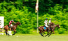 Maryland_Polo_20130630_040