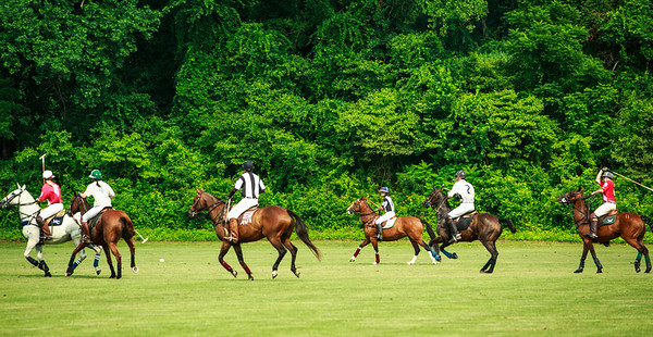 Maryland_Polo_20130630_037