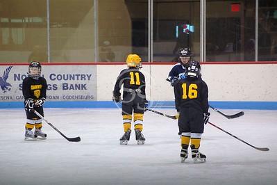 Mosquito Hockey