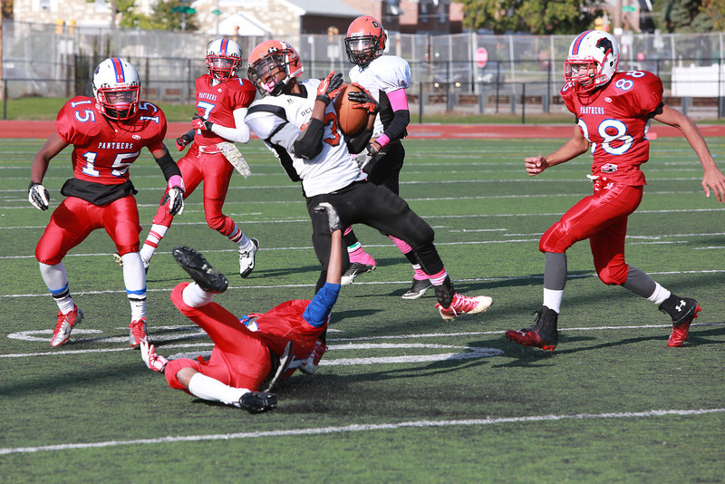 Panthers Vs Del-Val 10-25-2013-115