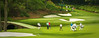 Amen Corner - Augsta National  - 2012 Masters