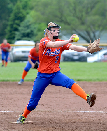 Newton's Kristen Hardiek pitches to an unseen Edwards County batter. Hardiek got the win in relief.