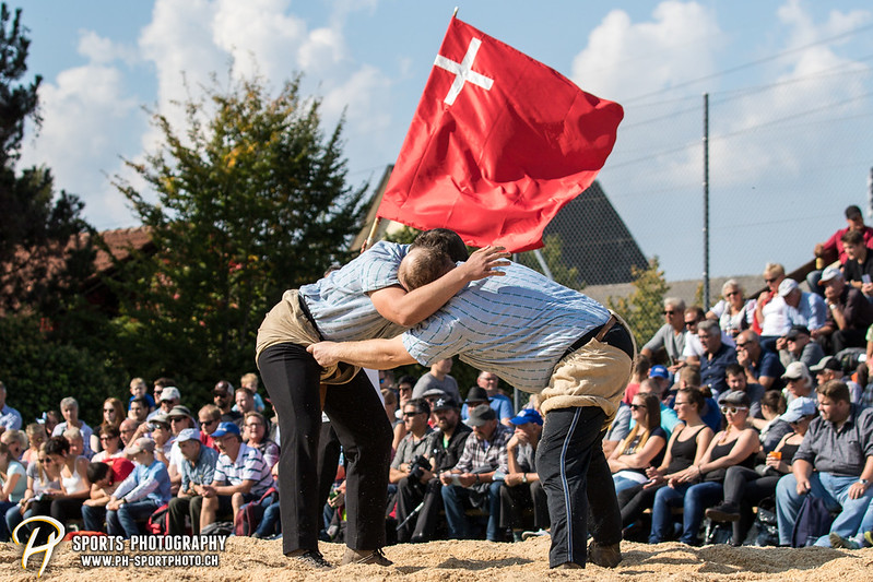 Schwingen - 2017 - 80. Herbstschwingertag - 24-09-2017