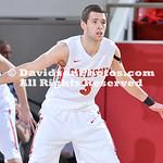 NCAA BASKETBALL:  JAN 31 LaSalle at Davidson