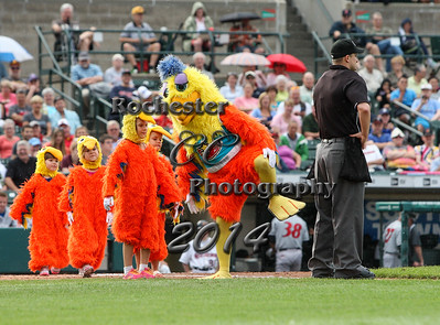 San Diego Chicken, RCCP6990