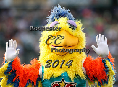 San Diego Chicken, RCCP6940