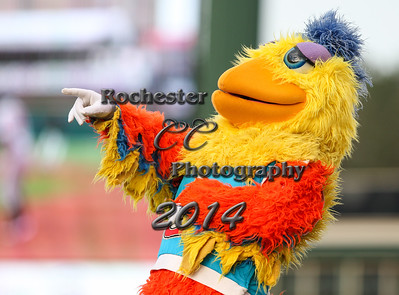 San Diego Chicken, RCCP7079