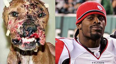 Michael Vick the Dog Killer