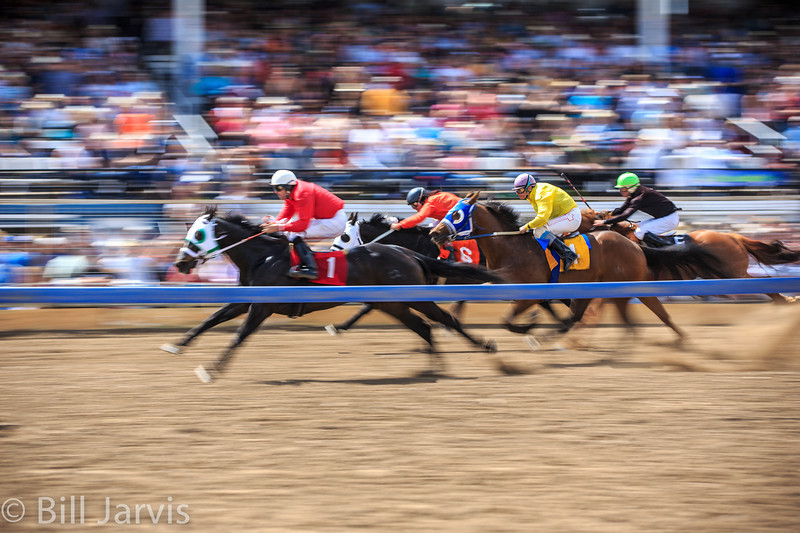 The Bucking Horse Sale is more than just rough stock events and auctions. Para-mutual horse racing is a popular event.