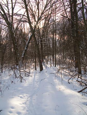 Milford MTB Trail